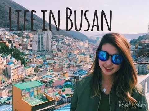 Vlog 2- Life in Busan (New Home)