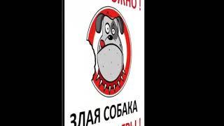 Осторожно! Злая собаЧка Смешные картинки с надпися...