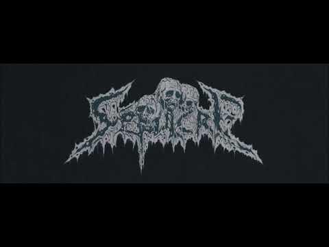 Sépulcre - Morbid Transcendence