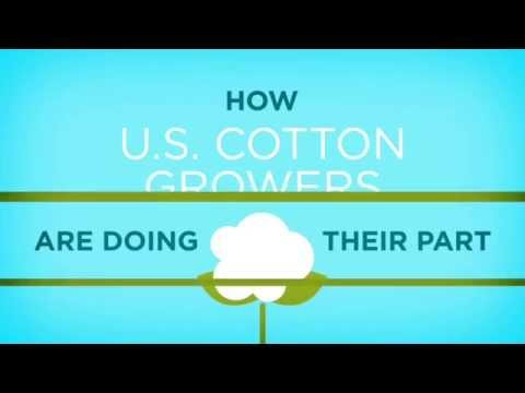 Cotton: Making Every Drop Count