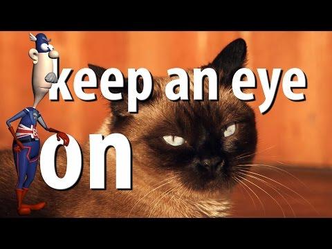 Keep An Eye On   British English Expressions   Learn English