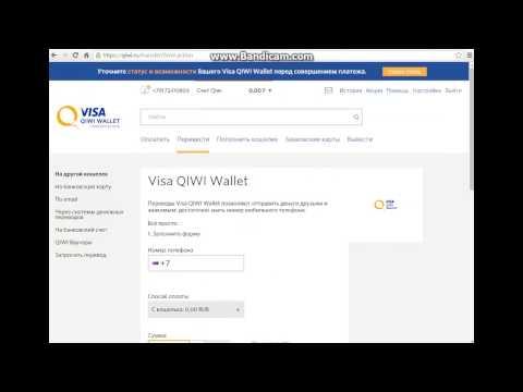 Мошенники в Visa QIWI Wallet!