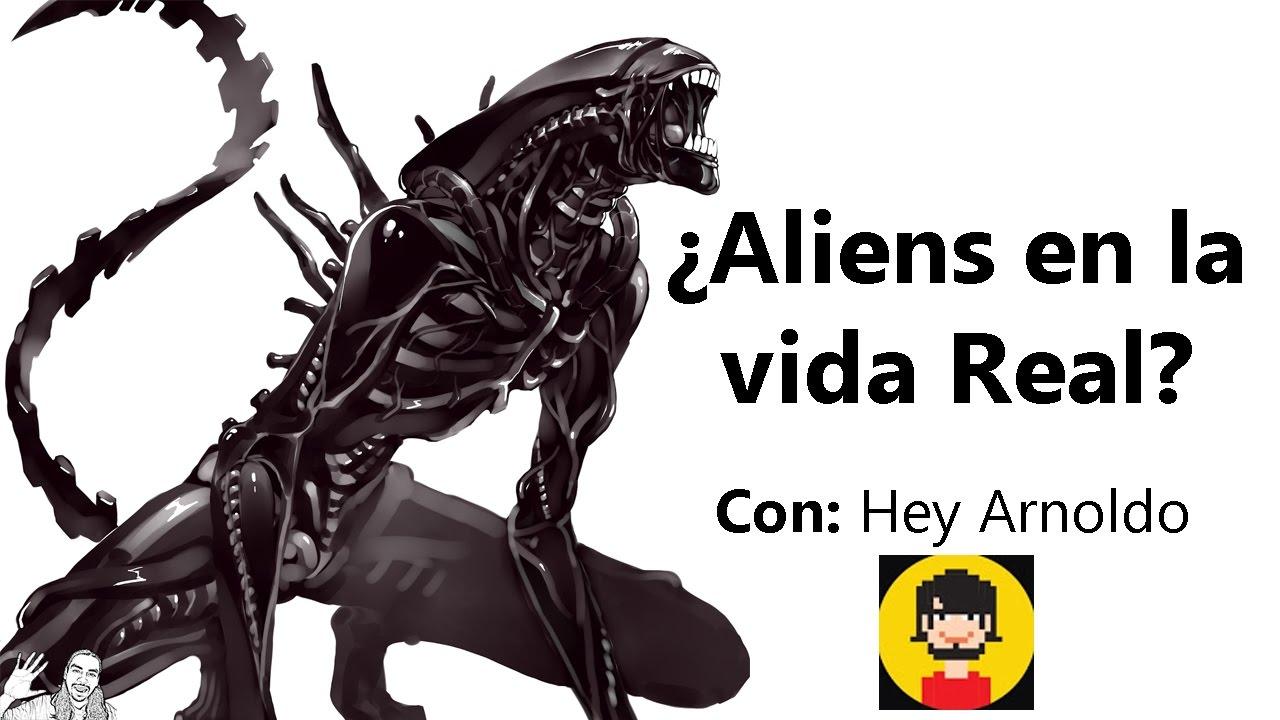 ¿Existen los Aliens en la vida Real? | FT. Hey Arnoldo - WikiSeba