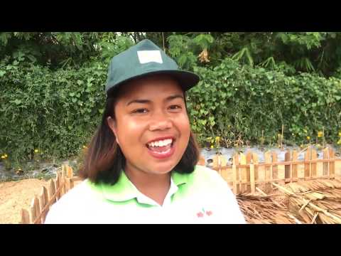 Basics of Vermi composting. Organic farming.