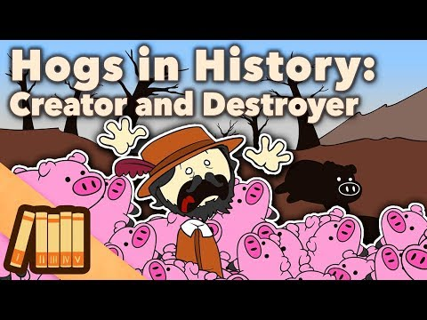 Hogs in History - Creator and Destroyer - Extra History