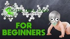 SMT: DIGITAL DEVIL SAGA 1 FOR BEGINNERS
