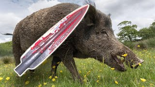 Spear Hunting Wild Boar!!