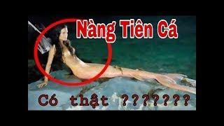 10 Lần Nàng Tiên Cá ( Người Cá ) bị camera bắt gặp
