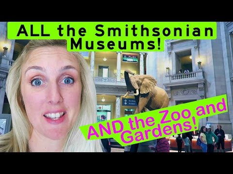 Every Smithsonian in DC! PLUS the Zoo and gardens! Best! (all the different ones)