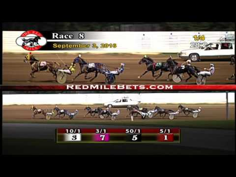 Red Mile Racetrack Race 8 9-3-2016