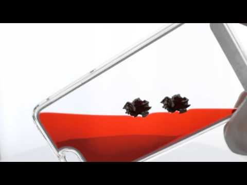 South Carolina Gamecocks Iphone 6 Case