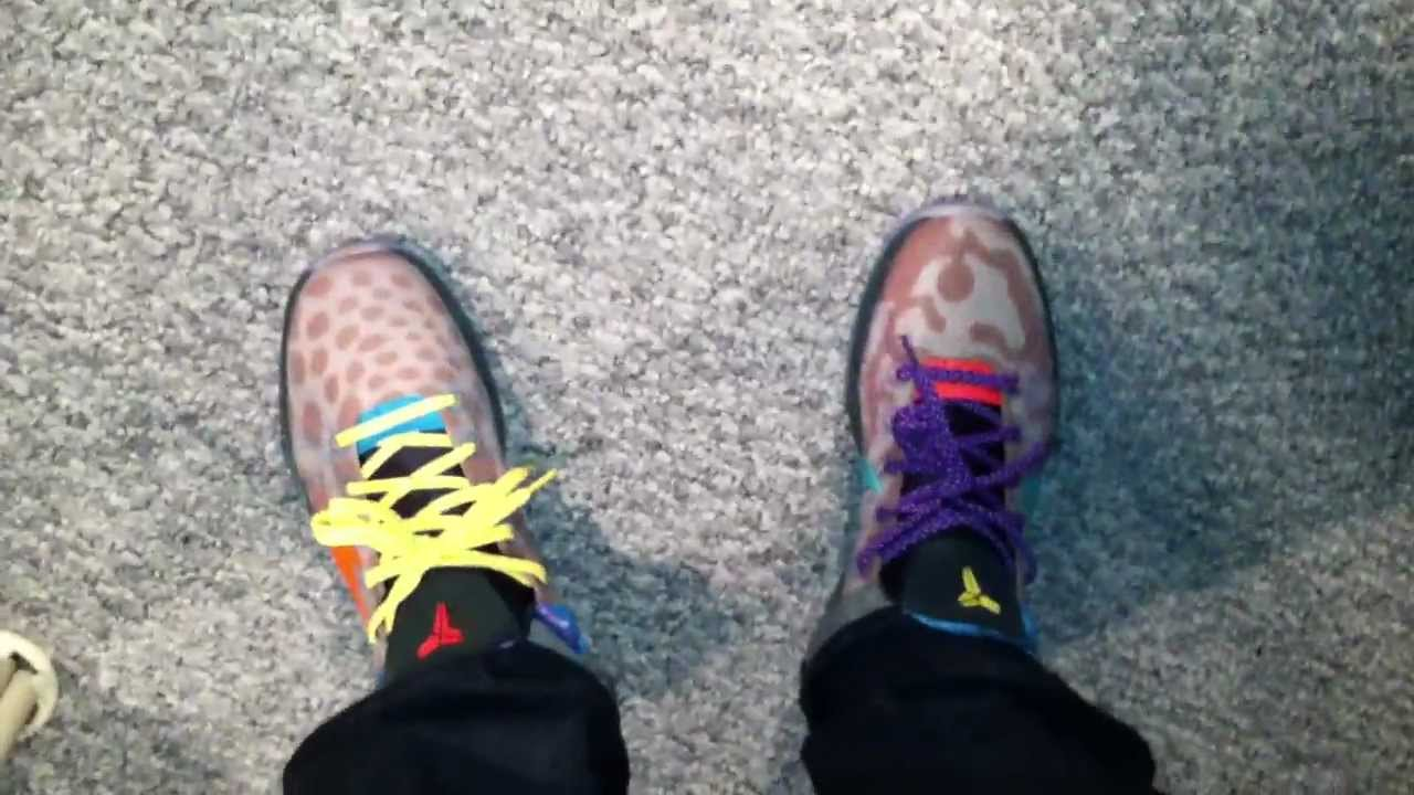 6e92bb3af52 Nike kobe vii 7 WHAT THE KOBE ON FEET - WTK on foot sneaker review kobe 8  viii - YouTube