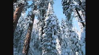 Leslie Von Dees - Sequoia Winter (Original Mix)