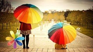 видео Как выбрать качественный зонтик?