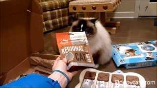 Ragdoll Cats Receive Orijen Regional Red Freeze Dried Cat Treats For Review - ラグドール - Floppycats