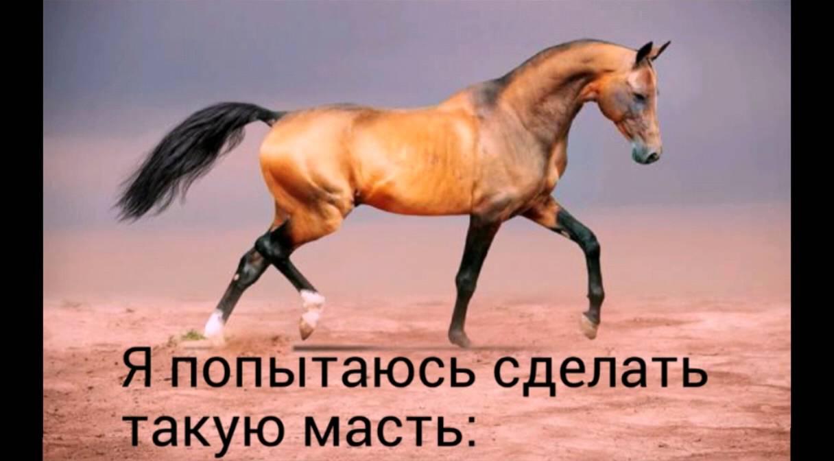 Как сделать лошадку видео