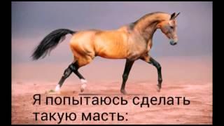 Как сделать лошадь из пластилина: ахалтекинец