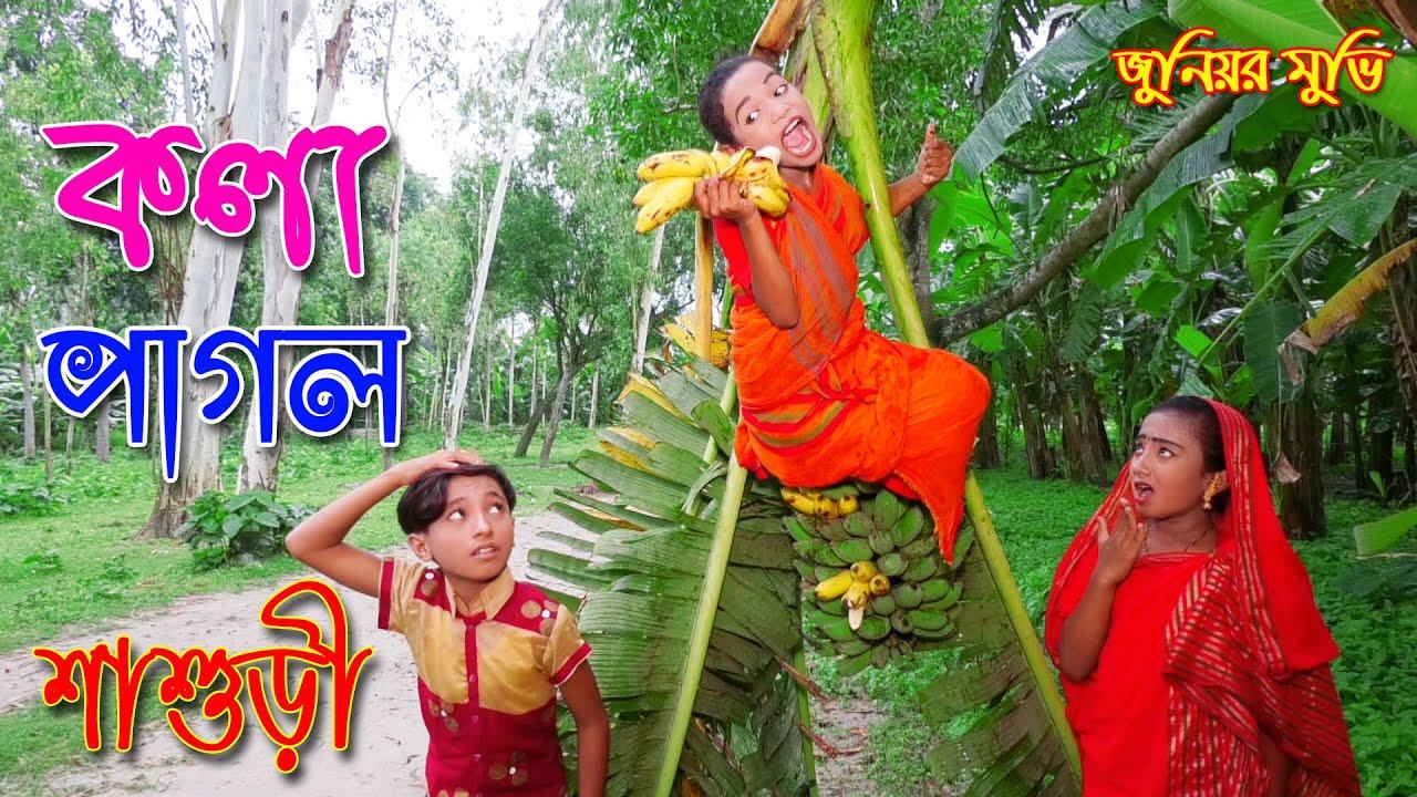 কলা পাগল শাশুড়ী । জুনিয়র মুভি । অনেক মজার কমেডি শর্টফিল্ম | Kola Pagol shashuri | Bangla New Natok