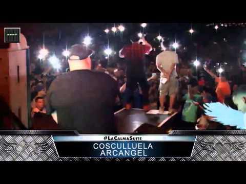 Cosculluela ft. Arcangel Live | La Calma 2015 [#2]