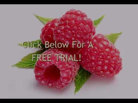 Raspberry Ketones Dosage Youtube