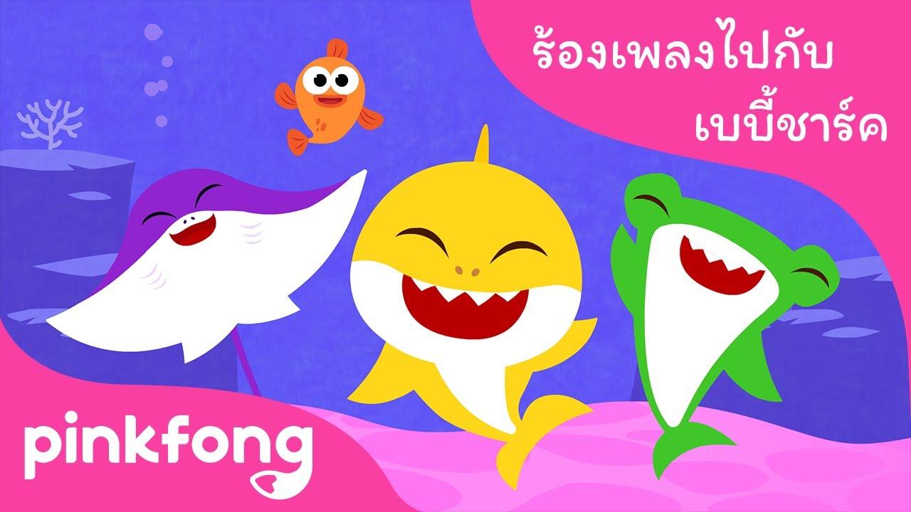 ทักทาย ฉลามน้อย | ฮิต ร้องเพลงไปกับ เบบี้ชาร์ค | ลูกฉลาม | พิ้งฟอง(Pinkfong) เพลงและนิทาน