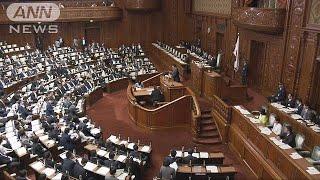 「親からの体罰禁止」 改正案の修正で与野党が合意(19/05/23)