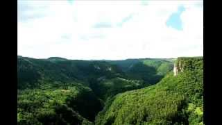 Medicine Buddha - feat. Malika Sellami, Kalki, and Synchroshakti (prod. Malika Sellami)