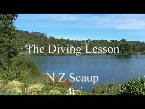 Diving Lessons! (NZ Scaup's on Lake Okareka)