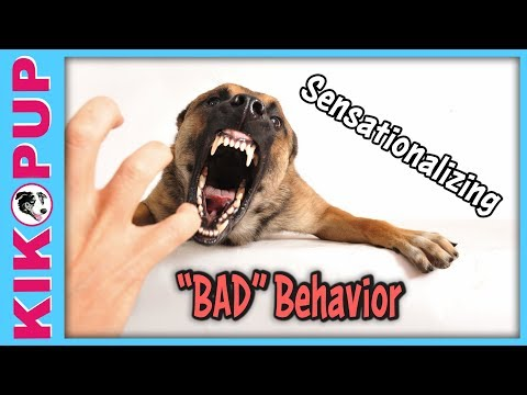 Aggressive Demon Dog! - The problem with sensationalizing bad behavior