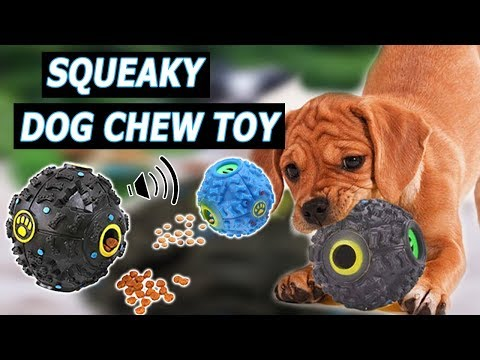 dogs-squeaky-toy-sound-effect-dog-chew-toy-(prank-your-dog)