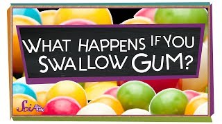 What Happens If You Swallow Gum?