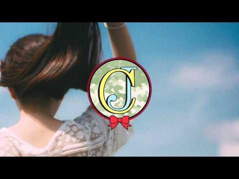 Beyce  irreplaceable Lindsay Lowend Remix