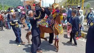 Download Video KUDA NGAMUK HAMPIR GIGIT ANAK KECIL Jalak Harupat Soreang Bandung MP3 3GP MP4