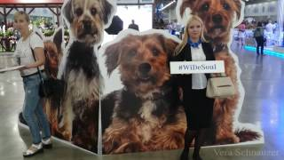 World dog show 2016 Wide Soul day 1