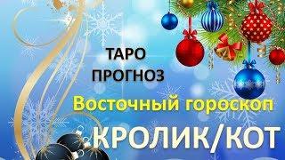 Таро Прогноз на 2019 г. ПО ВОСТОЧНОМУ ГОРОСКОПУ. КРОЛИК/КОТ.