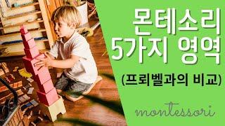 몬테소리교육 5가지 영역 (프뢰벨과 특징 비교) | F…