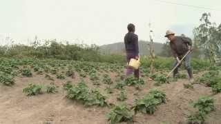 Segmento El Espíritu de la Ley: Proyecto de Ley de Tierras Rurales y Territorios Ancestrales
