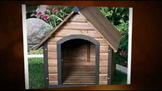 Build A Dog House - Step By Step Instructions - Brilliant