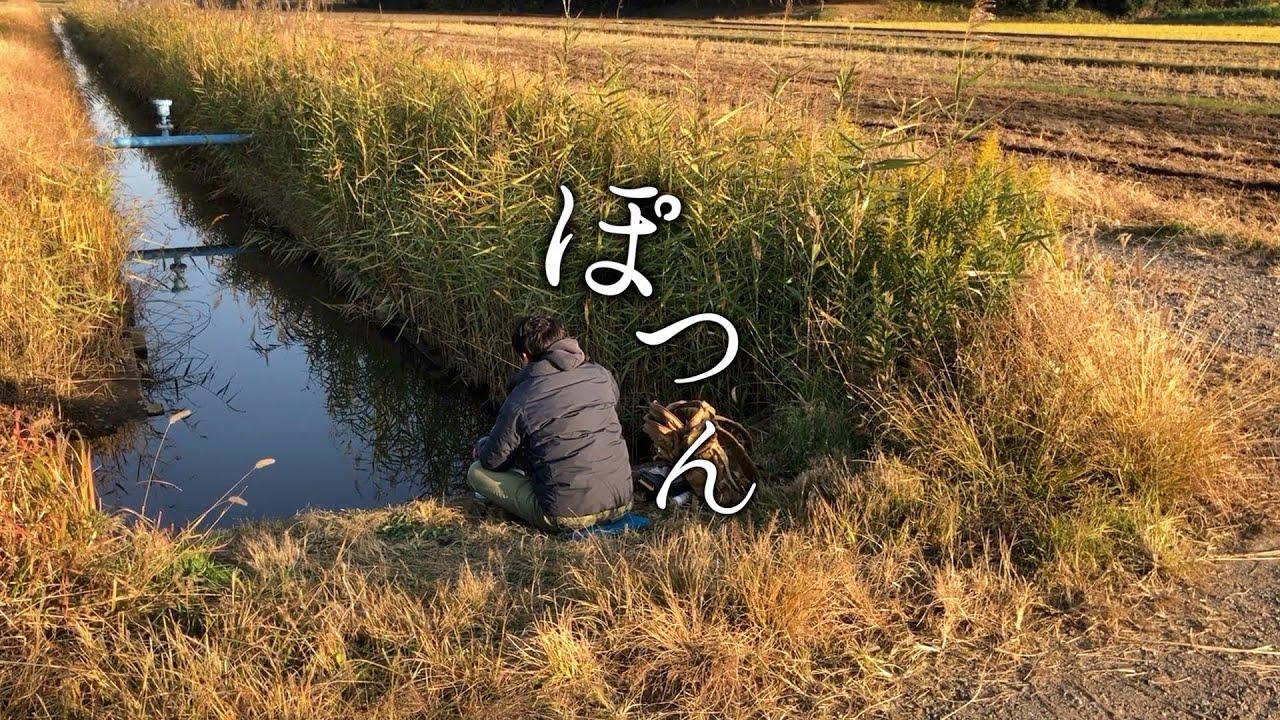 孤独の小鮒釣り フナを探すシリーズ micro fishing
