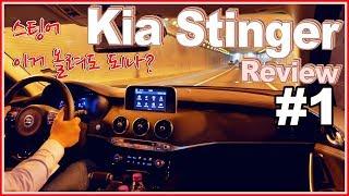 기아 스팅어 2.0 시승기 리뷰 ♥ 이런 단점이ㅠㅠ Kia Stinger Review 오토소닉스 자동차 리뷰 #91 ♥