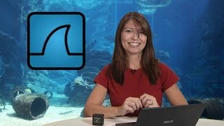 HakTip - How to Capture Packets with Wireshark - Getting Started thumbnail