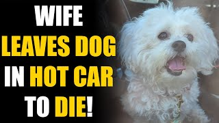 Wife Leaves DOG in HOT CAR, To CHEAT on Her Husband! Instantly Regrets It... | SAMEER BHAVNANI