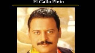 EL GALLO PINTO - WILFRIDO VARGAS