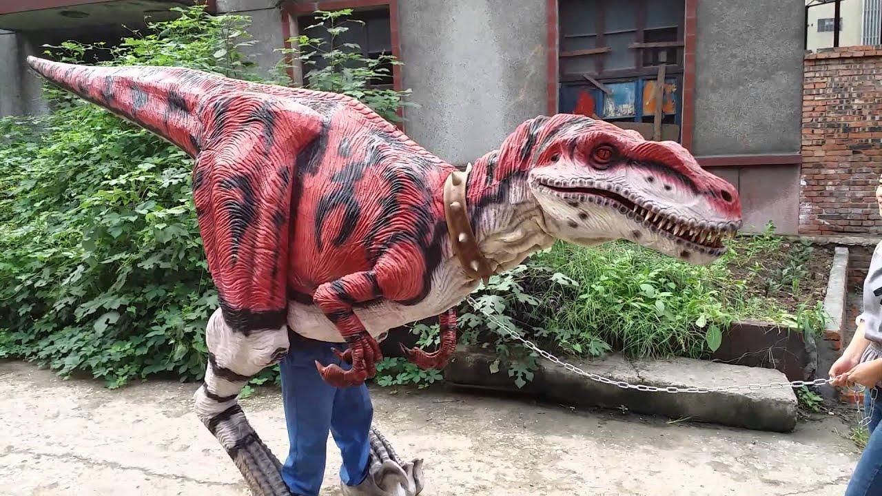 Cozy Dinosaur Costume Project Zigong Dinosaurs World Science