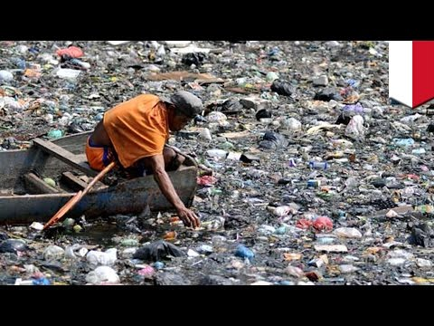Pacific Ocean plastic: Indonesia pledges $1 billion to fight ocean plastic waste - TomoNews