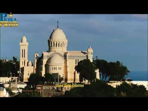 Algeria Desert Rose -(Live )
