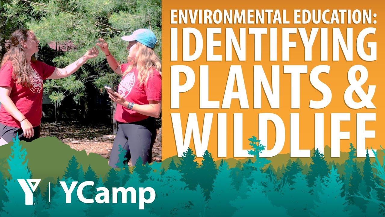 YCamp - Week 1 - Environmental Education (Ages 8-11)