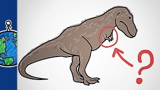 Why Did T Rex Have Such Tiny Arms?