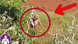 САМЫЕ странные видео снятые в T K-TOK