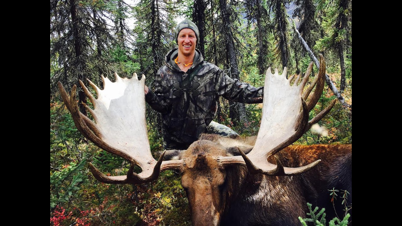 Diy alaskan moose hunt stuck n the rut 73 by stuck n the rut solutioingenieria Gallery